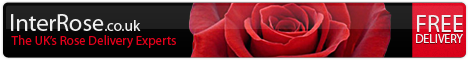 InterRose - the UKs Best Choice of Roses Online
