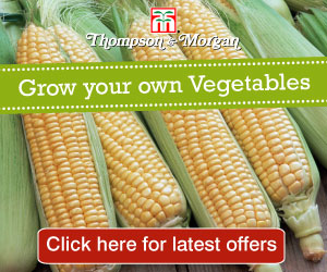 Thompson & Morgan - Quality Seeds and Gardening Products.