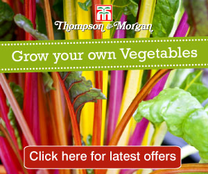 Thompson & Morgan - Quality Seeds and Gardening Products