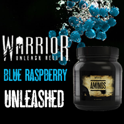 Warrior Supplements