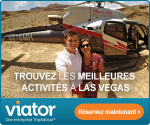 visites guidées ViatorCom attractions France