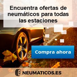 Neumaticos es