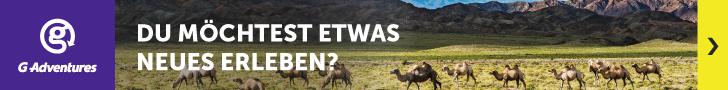 Safari Abenteuer