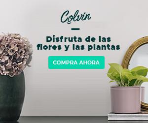 Colvin, floristería online a domicilio con descuento