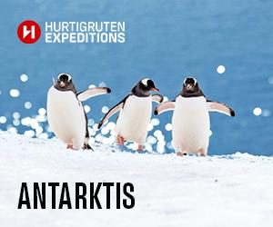 Hurtigruten Antarktis  Expedition buchen