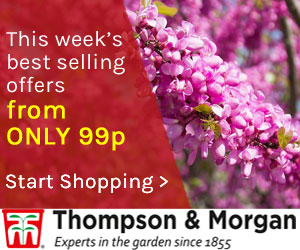 Get plants from Thompson and Morgan