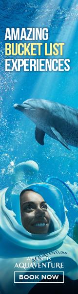 Atlantis Dubai Aquaventure