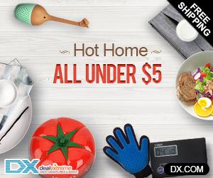 DealeXtreme Banner