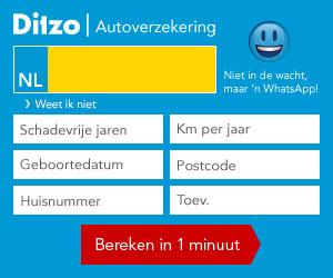 Wat is DitZo? 1
