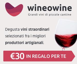 Wineowine logo
